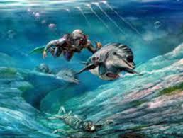 Кассий – боевой дельфин